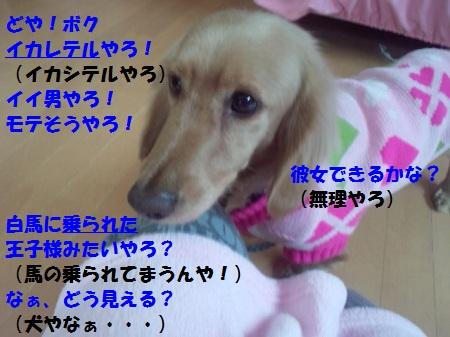 2013012213140002.jpg