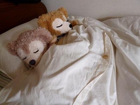 ダッフィー シェリーメイ おやすみなさい