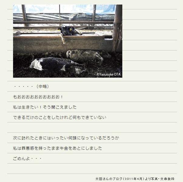 fuku6_20130324231458.jpg