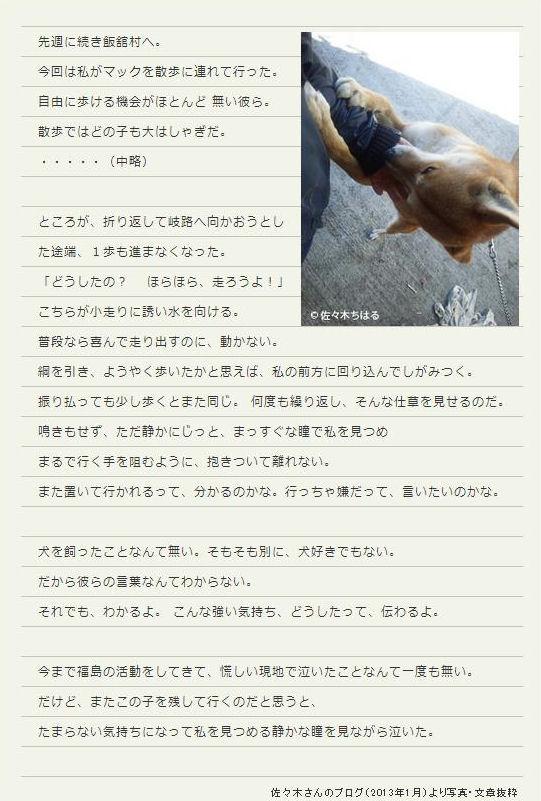 fuku7_20130324231458.jpg