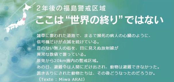 fuku8_20130324231458.jpg