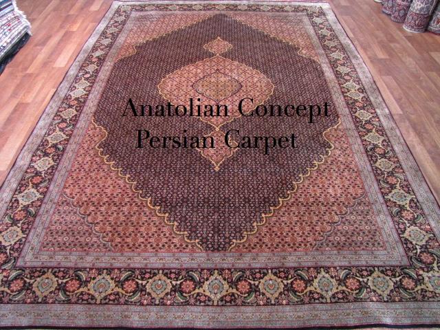 Persian1_20120428231141.jpg