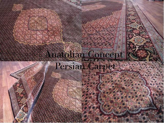 Persian2_20120428231140.jpg