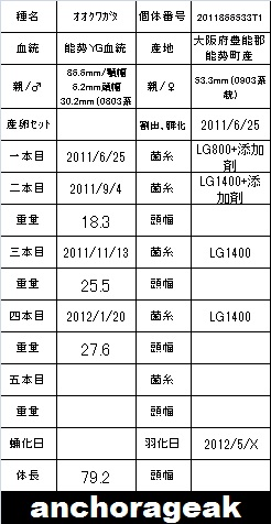 2011866533T1yasukong79card_20130302133524.jpg