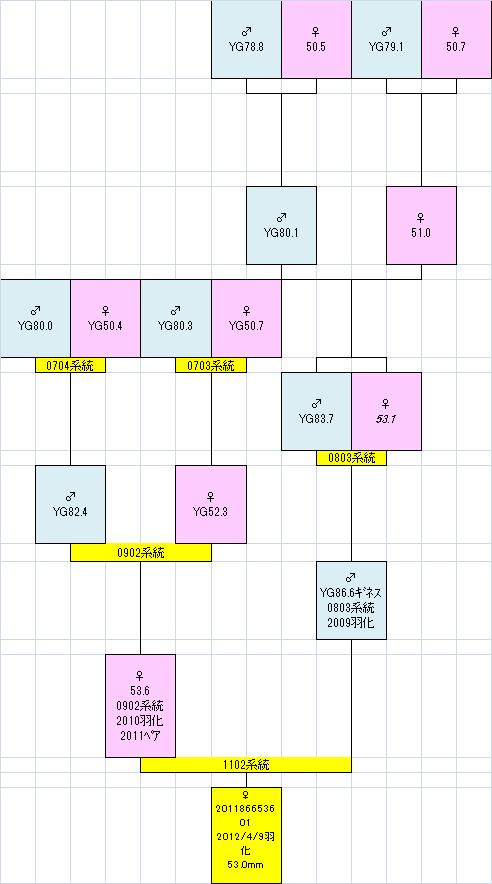 2011866536 530mm系統図