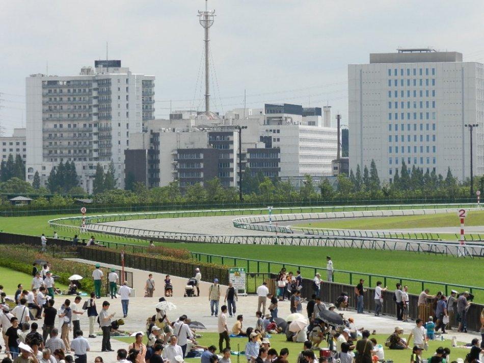 中京競馬場 直線の坂