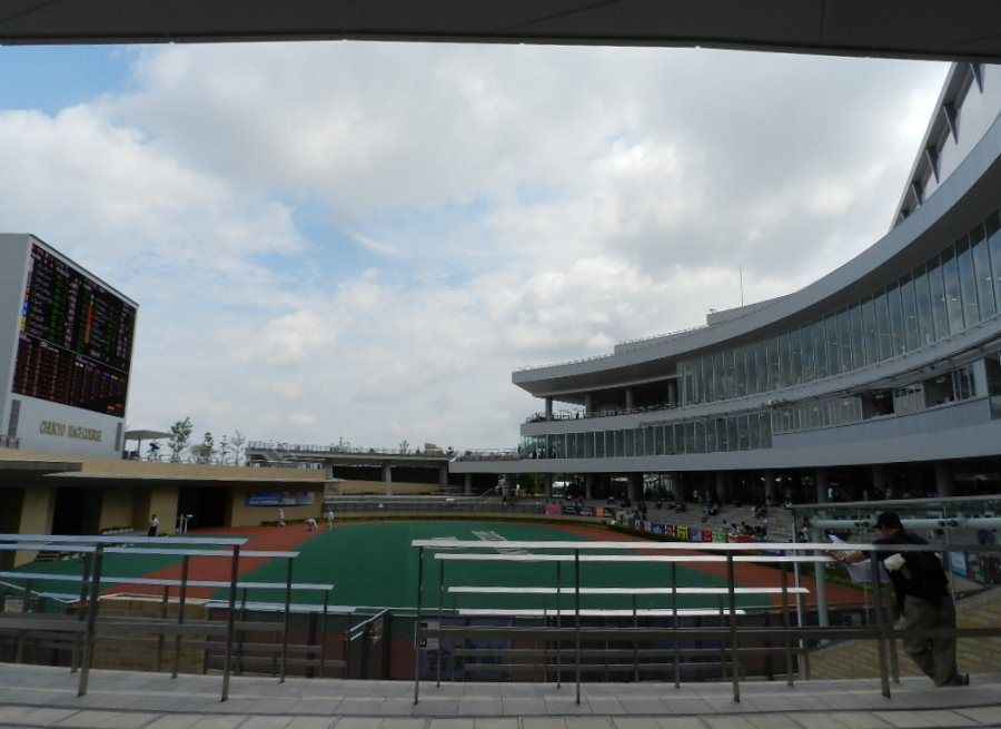 中京競馬場 パドック 1