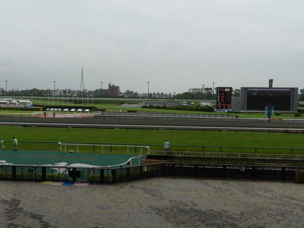 中京競馬場 2週目は雨 2