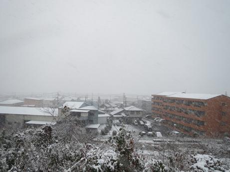 12 9日曜日雪8