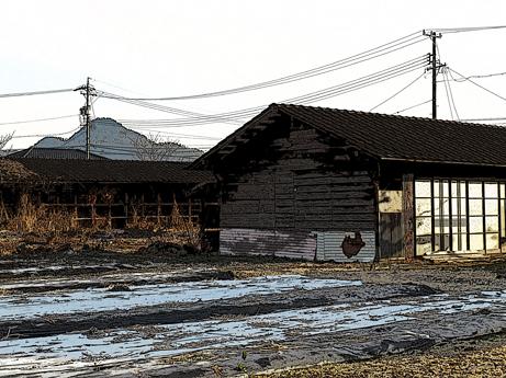 2013 1 6牛舎の廃墟1