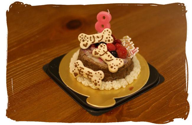 DSC02394-cake.jpg