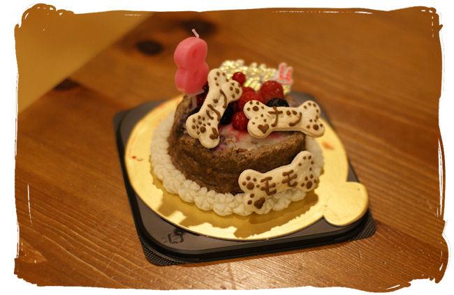 DSC02396-cake.jpg