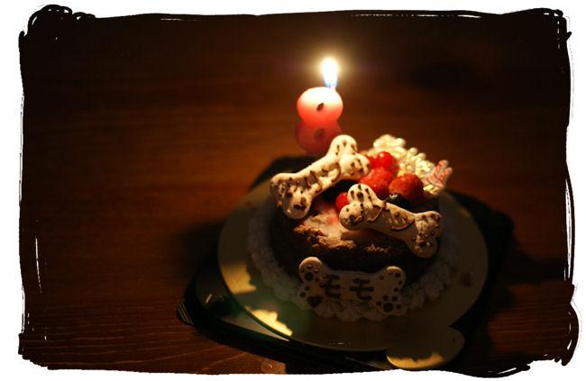DSC02404-cake.jpg