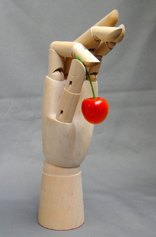 Model of the hand_09