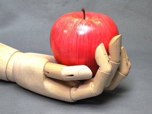 Model of the hand_08