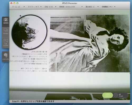 Ziggi_33.jpg