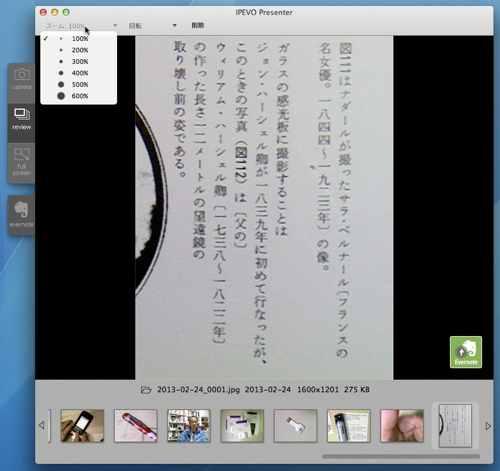 Ziggi_35.jpg