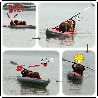 cats canoe