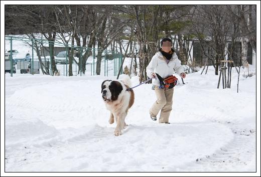 2012_1224takayama2012。120176