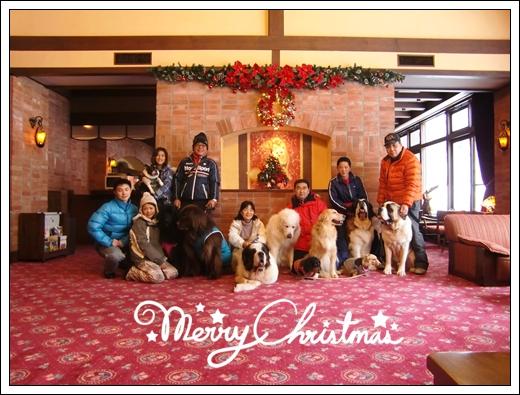 2012_1227takayama2012。12-20002