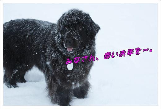 2012_1224takayama2012。120302