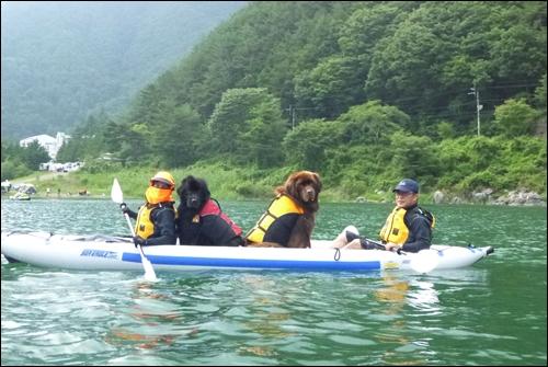 2012_0715saikocamp20023.jpg
