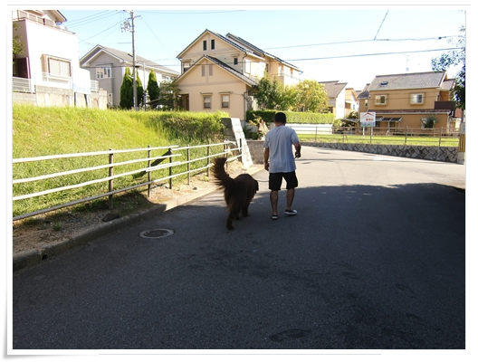2012_0917syampoo0006.jpg