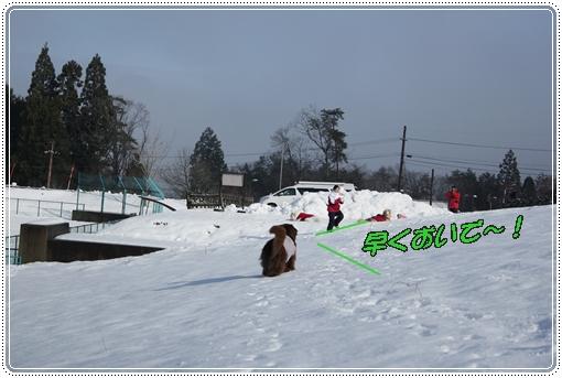 2012_1213kutuki20014.jpg