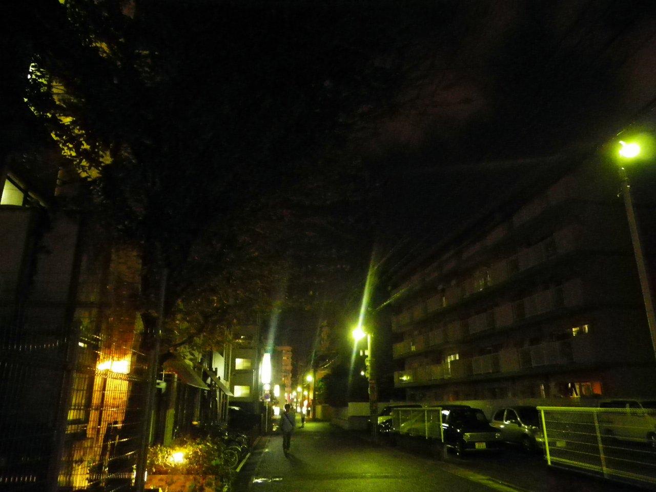 NightWander31.jpg