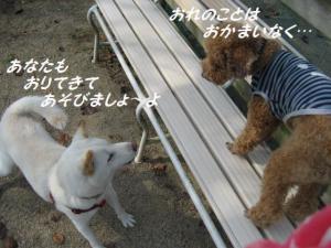 IMG_3734.jpg