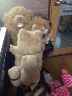 あらたライオンと戦う②写真