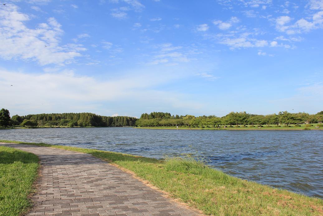 水元公園20120816-1
