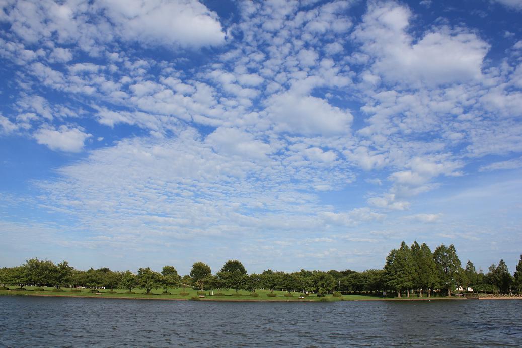 水元公園20120816-2