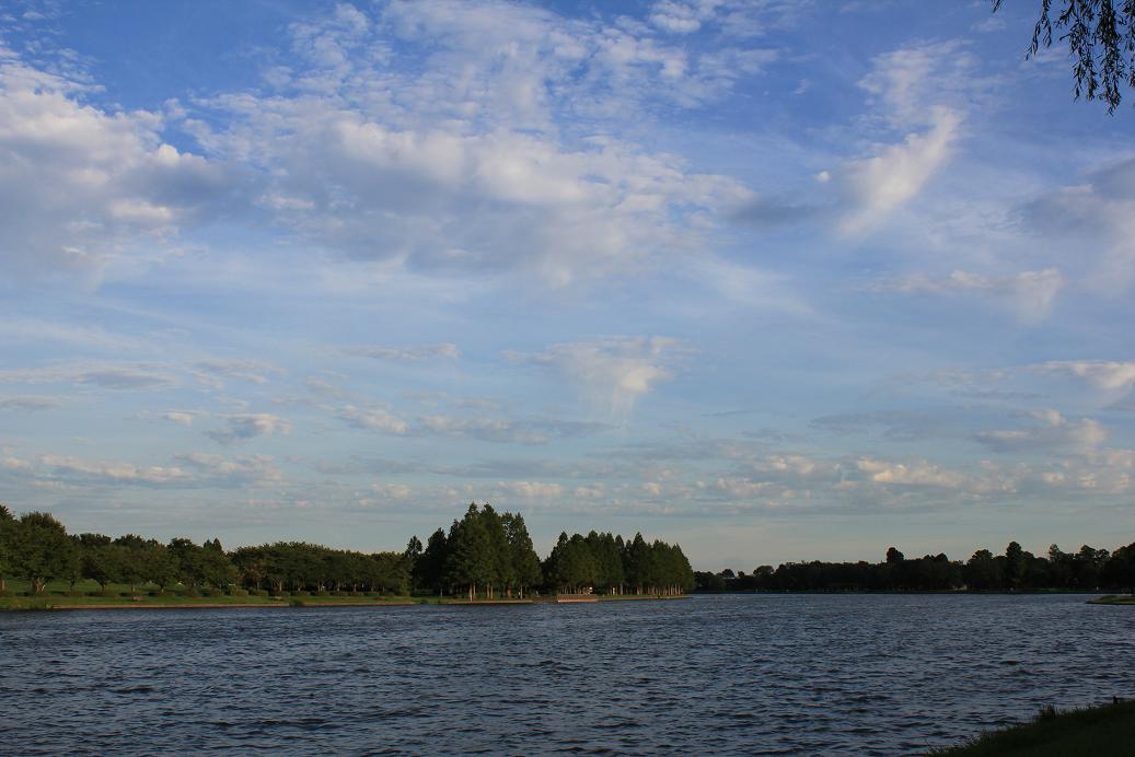 水元公園20120816-9