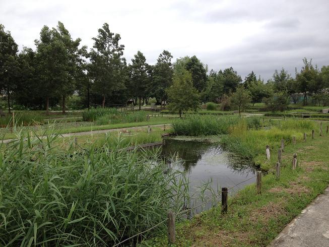 水産試験場跡地