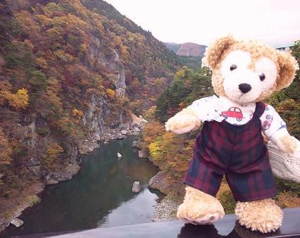 吊り橋ダッフィーちゃんブログ