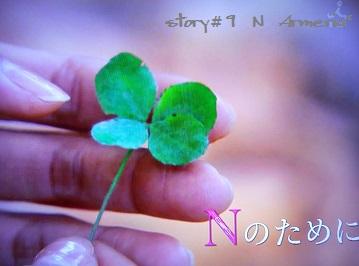 N9-1.jpg