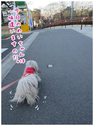 2012-12-12-01.jpg