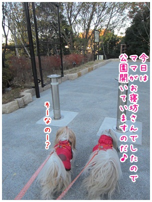 2012-12-12-02.jpg