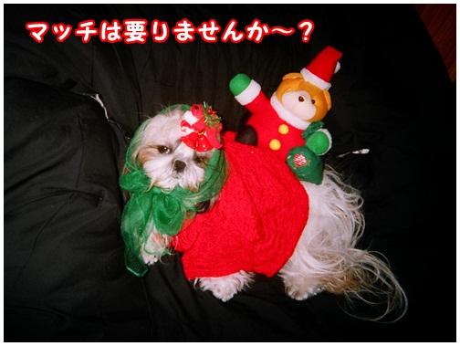 2012-12-24-01.jpg