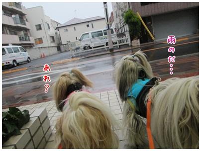 2012-12-30-04.jpg