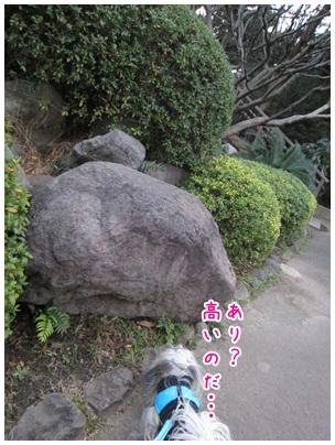 2013-01-05-05.jpg