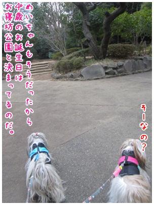 2013-01-07-04.jpg