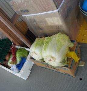 201212 冬ボランティア おまけ-06