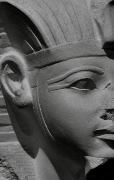 石膏像 エジプトの王の首-1