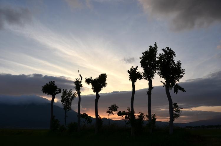 今日の夕陽 その2