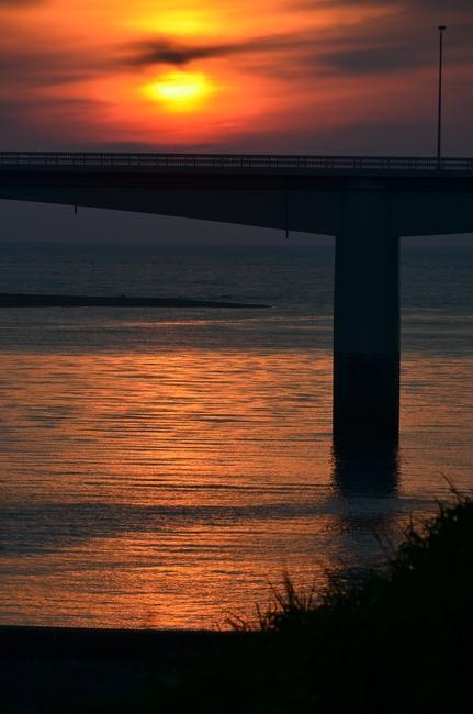 夕陽 河口