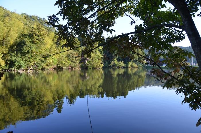 秋の池-1