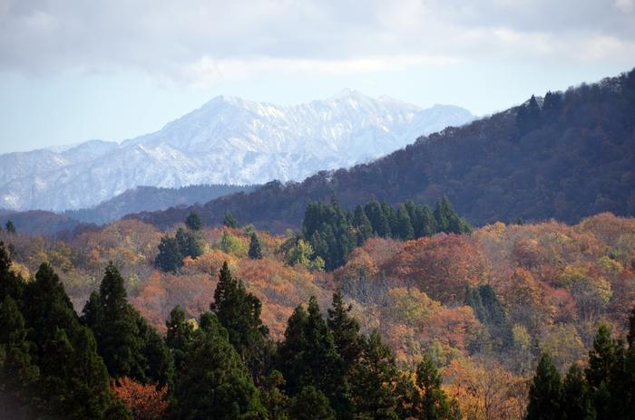 晩秋 里山 Ⅱ-1