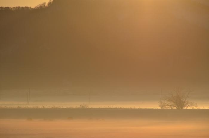 冬の朝-1